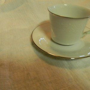 Noritake Retired Renia Cup and Saucer